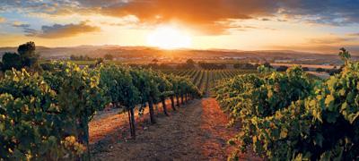 California Wine Road Trip 8 Must See Wineries Ken S